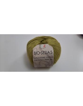 Cotone Bio Sesia 5 Verde 191